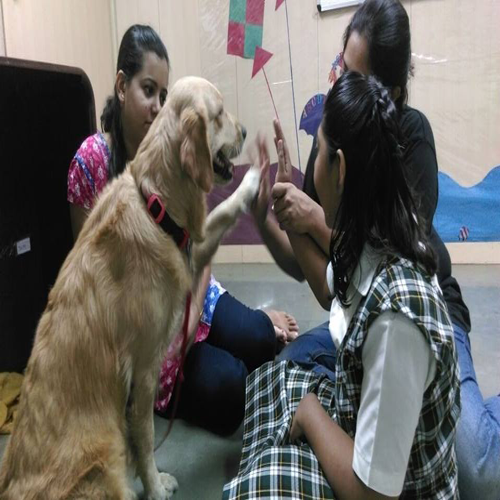 Animal-Assisted Activities for Children with Autism Spectrum Disorders