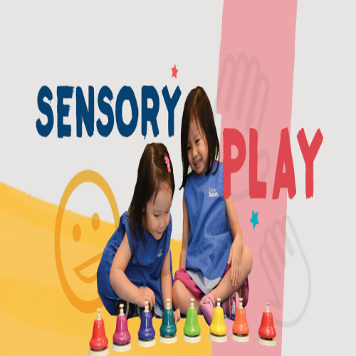 SENSORY ACTIVITY OF THE DAY